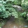 五ヶ瀬川の源流