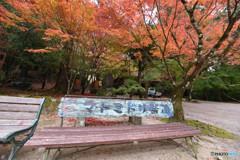 仁比山神社の秋⑧
