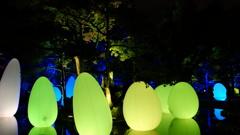 チームラボ広島城光の祭り 2