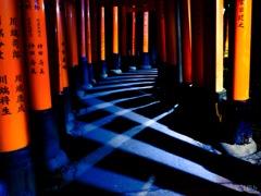 光が交差する廻廊