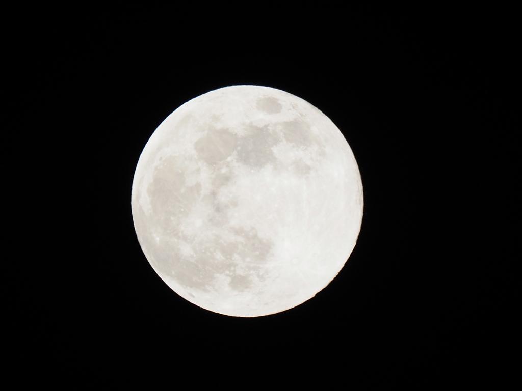 満月その1