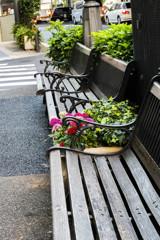歩道わきのベンチ