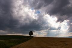 毎日低い雲 空の穴