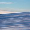 青い樹影と白い丘