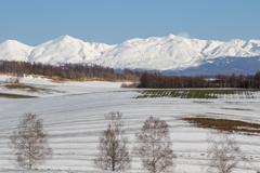 丘の雪解け