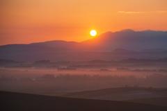 染まる朝霧
