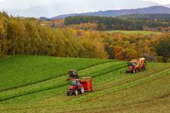 雨の農作業