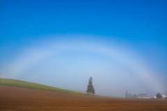 今年二度目の白虹