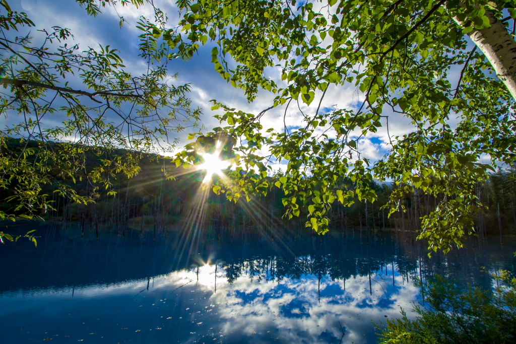 今朝の青い池