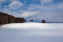 雪原を走る雲