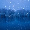 ♡の雪が降る青い池