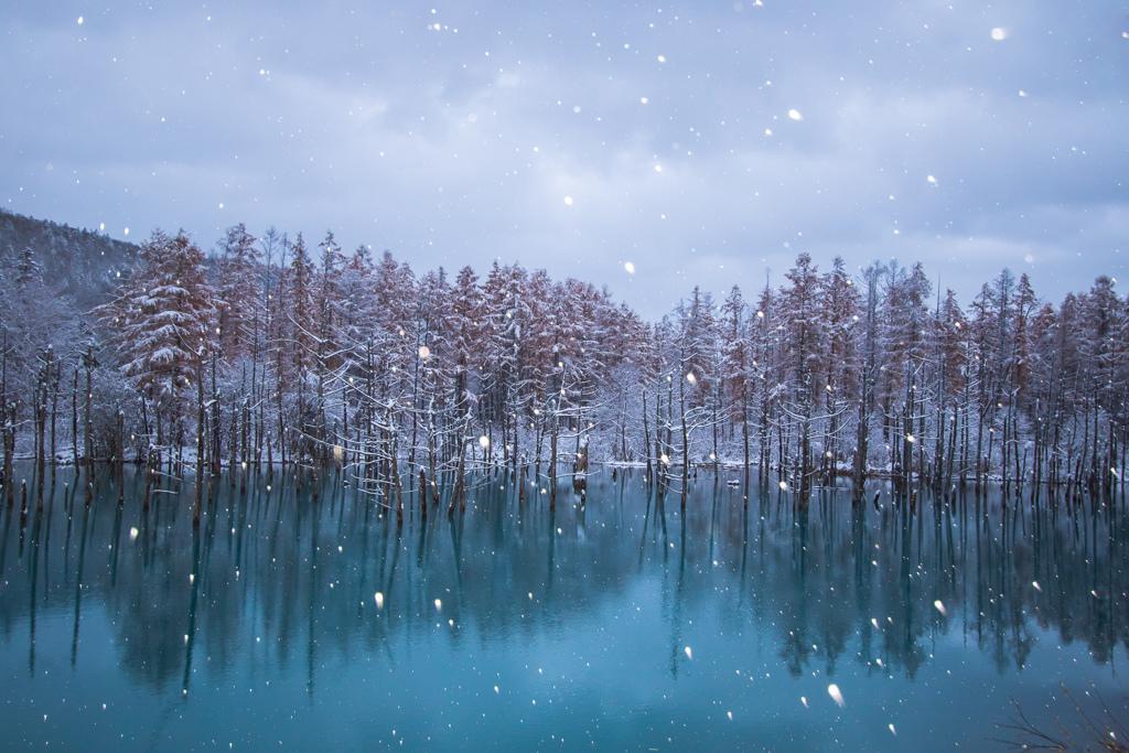 初雪2日目