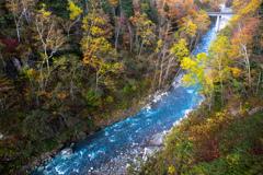 川の流れに身を任せ