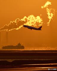 コロナで消えた航空会社
