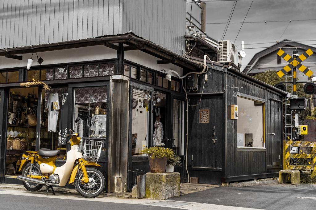 鎌倉今小路