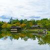 Autumn Reflection 1