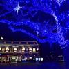 「上野の杜のイルミ」N551