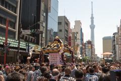 「三社祭」