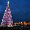 「ソラマチのクリスマス」DSC_0099