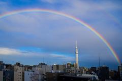 「虹と東京スカイツリー」