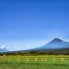 夏空の富士