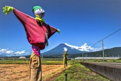 富士見の案山子