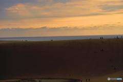 砂丘からの夕陽