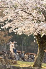 さわやかな春の朝