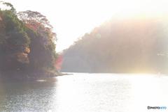 朝陽いっぱいの保津川