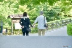 Kiyomizu-dera Temple ~素敵夫婦~