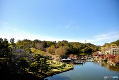 待望の秋晴れの公園