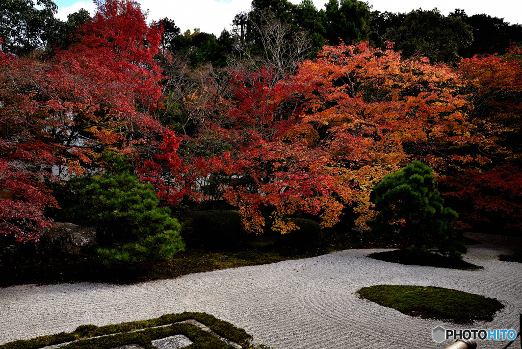 天からの授かりし庭園
