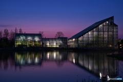 Twilight greenhouse