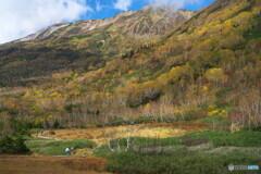 栂池の秋 ①