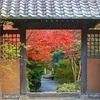 鎌倉 海蔵寺①