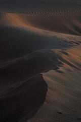 砂丘に朝が来る
