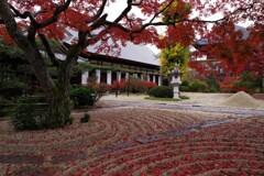 晩秋の月山寺