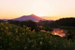 紫峰の夜明け