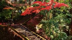 紅葉の階段