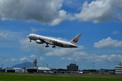 Celebration Express in  kagoshima
