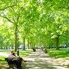 Green Park : England