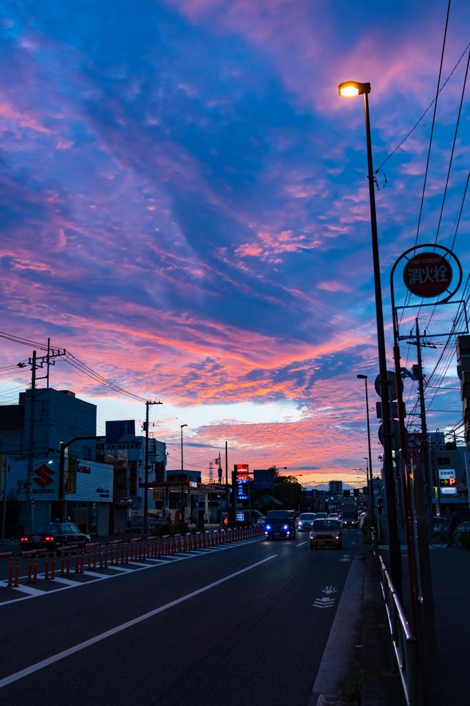 散歩 早朝