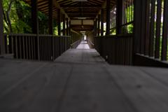 本土寺 渡り廊下の彼方