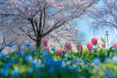春のパステル