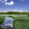 田舎、青空、釣り人^^¥