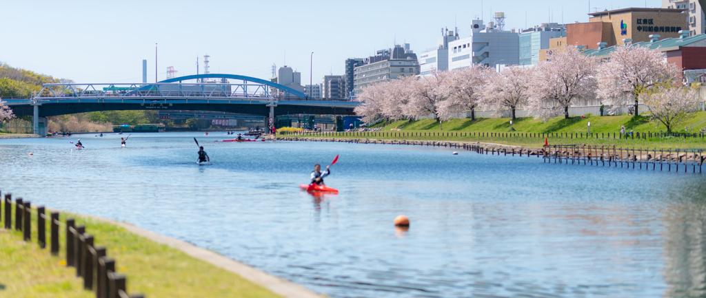 川とカヌーと緑と桜