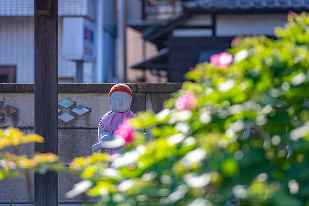 夏花にお地蔵さま^^¥