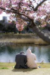 河津桜と陽だまりの中で^^¥