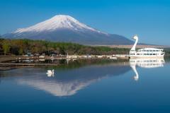 富士の山 山中湖に映る!