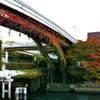 お洒落な橋
